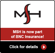 bnc-msh-merger
